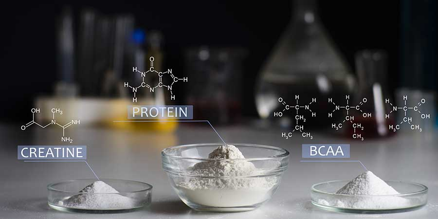 chemical formulas of creatine and protein