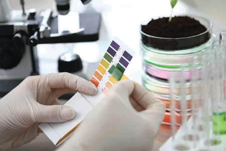 scientist using chemistry to test soil acidity